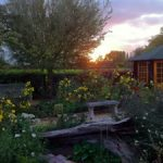 Congresbury Garden Trail – Sun 14 June – 10:30am-4:30pm