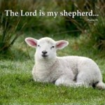 Congresbury Singers presents… The Lord is my shepherd