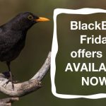 Country Innovation – BlackBird Friday offers available NOW!