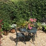 Open Garden and Plant Sale – Sat 9th June 2018