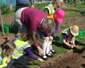 The children of St Andrew's School are hard at work on their allotment plot.